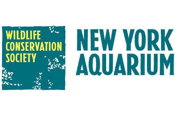 New York Aquarium Offers Military Discount On Tickets Military Com