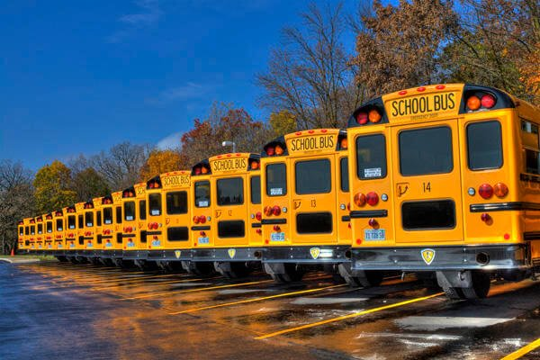 Row of school buses.