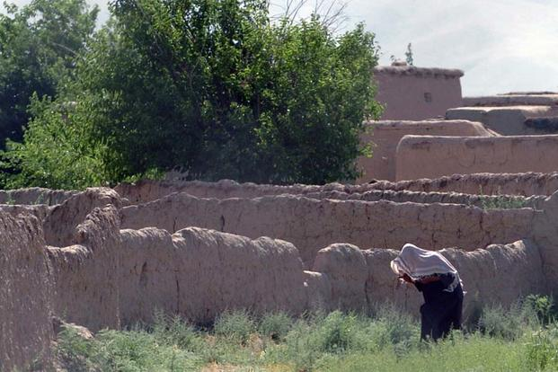 FILE -- A farmer stoops in a field outside his Eastern Afghanistan village. (U.S. Air Force photo/Tech. Sgt. Kevin Wallace)
