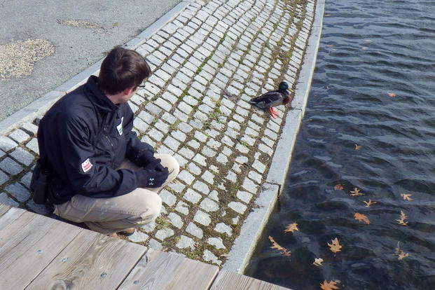 Potomac oil sheen response:  Dan Rauch, a wildlife biologist with the Department of Energy and Environment, observes an oiled duck at Constitution Gardens in Washington, Fri., Feb. 5, 2016. (U.S. Coast Guard photo/Petty Officer 3rd Class Laurel Siegrist)