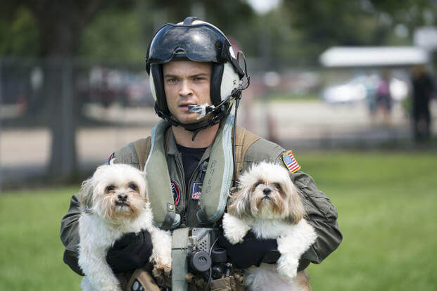Naval Aircrewman (Helicopter) 2nd Class Jansen Schamp, rescues two dogs at Pine Forrest Elementary School, a shelter that required evacuation after flood waters from Hurricane Harvey reached its grounds, Aug. 31, 2017. (U.S. Navy/Christopher Lindahl)