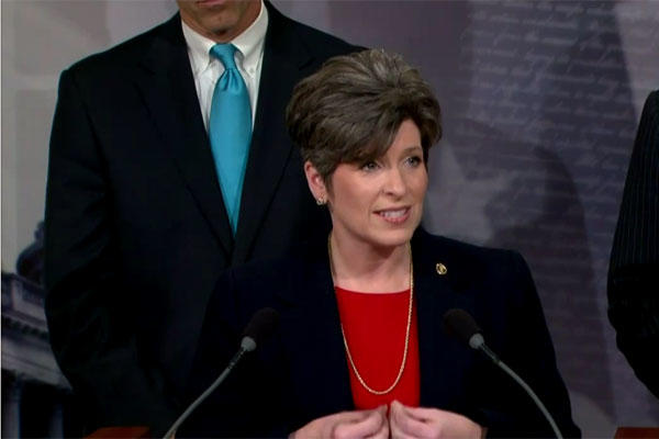 "Sen. Joni Ernst of Iowa said she was surprised that the Air Force is the only service that has no ""buddy system"" for its students in training status. (US Govt photo)"
