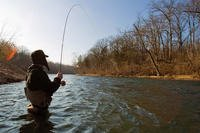 Fly fishing in North Fork River